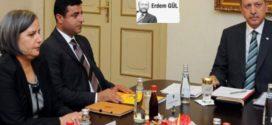 تحلیل آماری آرای کُردهای ترکیه
